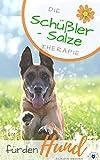 Schüßler Salze für den Hund: Die Schüßler Salze Therapie für den Hund -...
