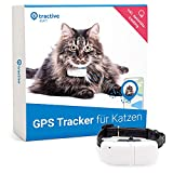 Tractive GPS Tracker für Katzen (2021) mit Halsband. 24/7 GPS-Ortung & 365 Tage...