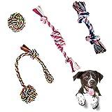 4 Pcs Hundespielzeug für Kleine und Mittlere Hunde, Tau Hundespielzeug Hund Seil...