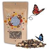 200g Schmetterlingswiese Samen für eine bunte Blumenwiese - Farbenfrohe &...