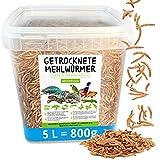 MeerBach Animal Mehlwürmer getrocknet • 5 Liter (800g) Futtermittel im Eimer •...