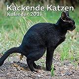 Kackende Katzen Kalender 2021: Katzenliebhaber Geschenke Lustig | Kackende Katze |...