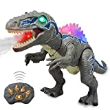 WISHTIME Fernbedienung Dinosaurier ElectricToy Kinder RC Tierspielzeug LED Leuchten...