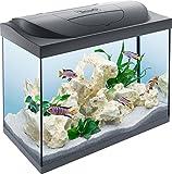 Tetra Starter Line 80 L Aquarium Komplett-Set mit LED-Beleuchtung - stabiles...