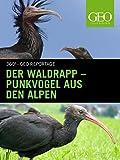 Der Waldrapp - Punkvogel aus den Alpen