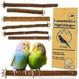 6 Natur Sitzstangen: für Wellensittich, Kanarienvogel, Nymphensittich. VERBESSERT:...