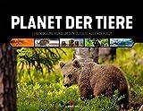 Planet der Tiere, Lebensräume rund um den Globus, Kalender 2021, Wandkalender im...