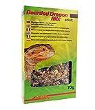 Bearded Dragon Mix Adult 70 g, Spezialfutter für adulte Bartagamen und andere...