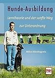 Hunde-Ausbildung: Lerntheorie und der sanfte Weg zur Unterordnung