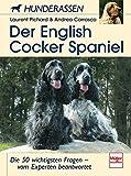 Der English Cocker Spaniel: Die 50 wichtigsten Fragen - vom Experten beantwortet...