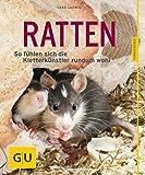 Ratten als Heimtiere, glücklich & gesund gelb 12 x 3,5 cm: So fühlen sich die...