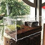 Vinnykud Mini Terrarium Transportbox,Reptil Fütterungsbox aus Acryl, Tragbarer...